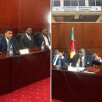 Read more about the article Séance de travail à l'Assemblée Nationale du Cameroun